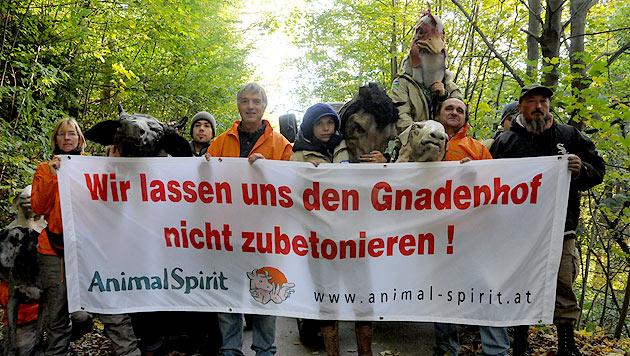 Tierschützer protestieren gegen Abbruchbescheid (Bild: Animal Spirit)