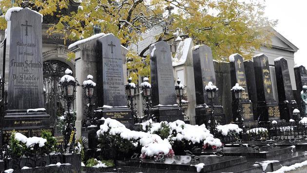 Friedhofs-Navi lotst Wiener künftig zum gesuchten Grab (Bild: Hans Punz/dapd)