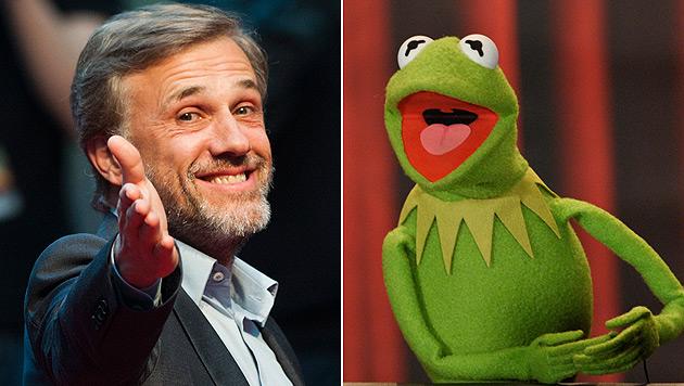 Christoph Waltz könnte bei den Muppets mitspielen (Bild: dapd)