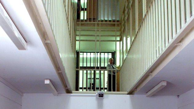 Beamte: Sofortiger Amtsverlust bei Folter (Bild: APA/Rubra (Symbolbild))