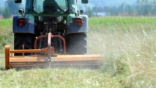 Österreichischen Bauern droht Milliardenschnitt (Bild: APA/HERBERT PFARRHOFER)