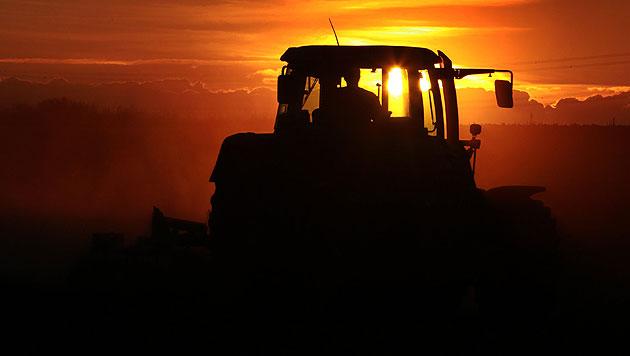 Weststeirer von Traktor eingeklemmt und getötet (Bild: dpa/Karl-Josef Hildenbrand (Symbolbild))