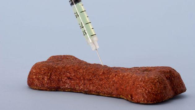 Vorarlberger legte mit Gift versetztes Fleisch aus (Bild: thinkstockphotos.de)