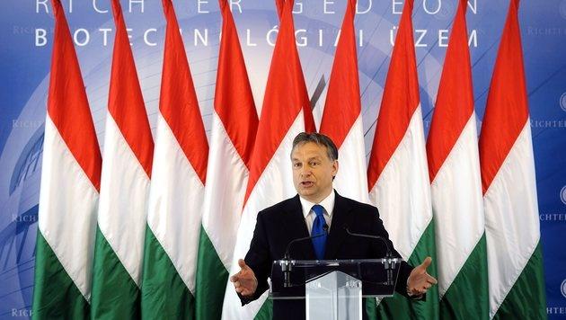 Premier Orban nimmt unsere Supermärkte ins Visier (Bild: AP)