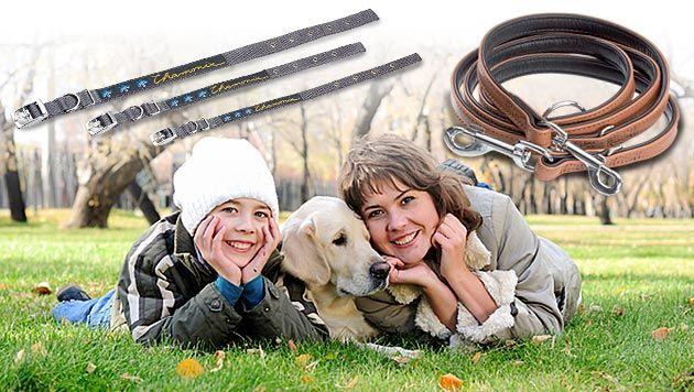 Täglich Gutscheine für Leinen & Halsbänder sichern! (Bild: thinkstockphotos.de, krone.at-Grafik, Fressnapf (Symbolbild))