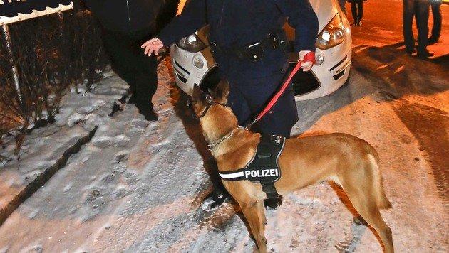 Vize-Ortschef verfolgt Räuber-Duo nach Taxiüberfall (Bild: MARKUS TSCHEPP)