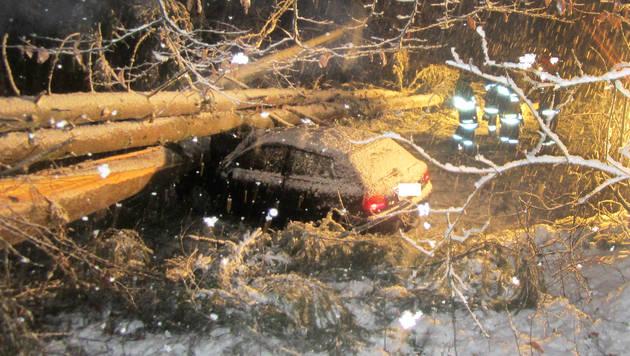 OÖ: Frauen in Auto beinahe von drei Bäumen erschlagen (Bild: APA/FF VÖCKLABRUCK)
