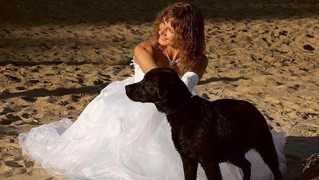 Wenn der Hund bei der Hochzeit dabei sein soll (Bild: thinkstockphotos.de)
