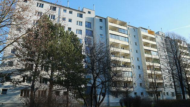 15 Verletzte bei Brand in Wiener Gemeindebau (Bild: Peter Tomschi)
