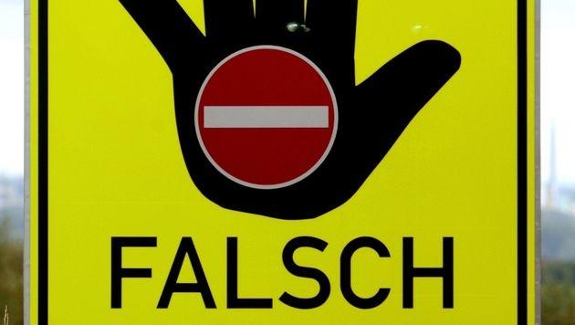 Geisterfahrerin, weil Navi auf A1 zum Wenden verleitete (Bild: dpa/Roland Weihrauch)