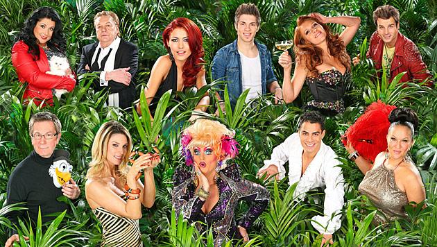 Diese elf Promis ziehen ins RTL-Dschungelcamp (Bild: (c) RTL/Stefan Gregorowius)