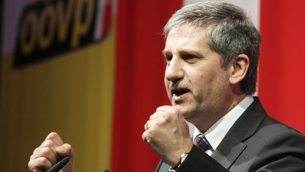 """Spindelegger prognostiziert: 2013 wird """"Jahr der ÖVP"""" (Bild: APA/RUBRA)"""