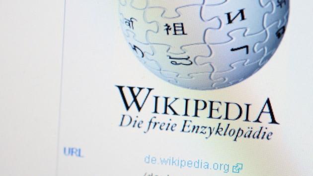Türkei will Wikipedia-Sperre aufrecht erhalten (Bild: Michael Gottschalk/dapd)