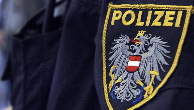 Polizist durch Selbstschussanlage am Ohr verletzt (Bild: APA/HERBERT P. OCZERET)