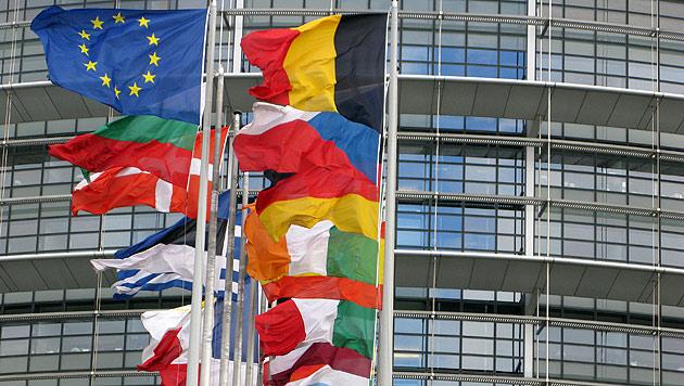 IS-Material bei Fahrern des EU-Parlaments gefunden (Bild: dpa/Lars Halbauer)
