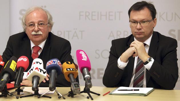 """Nazi-Vergleich für Ackerl """"nicht ganz glücklich"""" gewählt (Bild: APA/RUBRA)"""