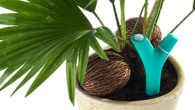 Bluetooth-Sensor l�sst sterbende Pflanzen Hilfe rufen (Bild: Parrot)