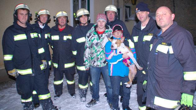 Hündin überlebt in NÖ dank Feuerwehr Sturz in Schacht (Bild: Einsatzdoku.at)