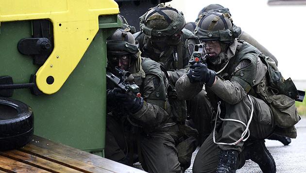 Einsatzchef: Kein Grund, Profiheer-Projekte zu stoppen (Bild: APA/ROBERT JAEGER)