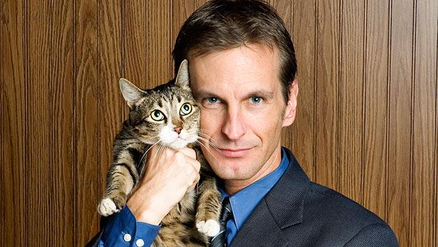 Was Sie von Katzen für Ihre Karriere lernen können (Bild: thinkstockphotos.de)