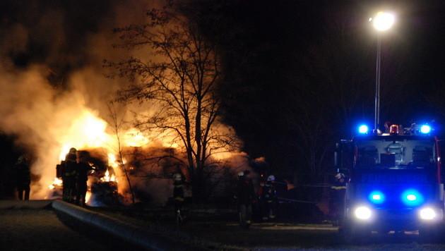 Feuer in Stall auf Reiterhof in NÖ gelegt? (Bild: Pressestelle BFK Mödling)