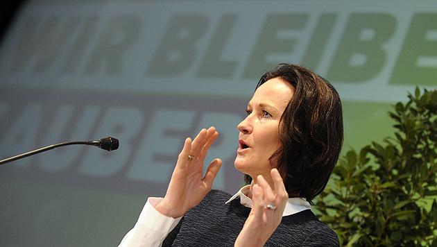 "Grüne: Mit neuem Gesetz ""Energie-Armut"" bekämpfen (Bild: APA/HERBERT P. OCZERET)"