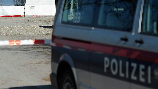 Bei Minusgraden f�nf Tage in Lkw gepfercht (Bild: APA/DIETMAR STIPLOVSEK (Symbolbild))