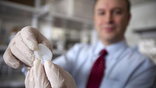 Forscher erzeugen mittels 3D-Drucker k�nstliches Ohr (Bild: Cornell University/Lindsay France)
