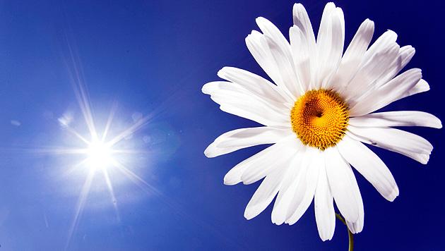 Auch diese Woche startet mit Sonnenschein (Bild: dpa/Frank Rumpenhorst)