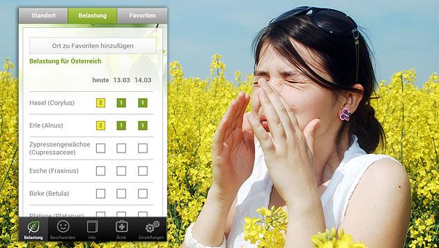 Heimische Gratis-App für persönliche Pollenwarnung (Bild: thinkstockphotos.de, pollenwarndienst.at)