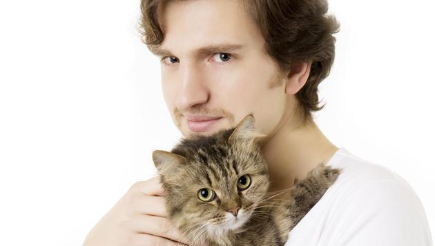 Katzenhalter dürfen ihre Tiere beruhigt streicheln (Bild: © 2011 Photos.com, a division of Getty Images)