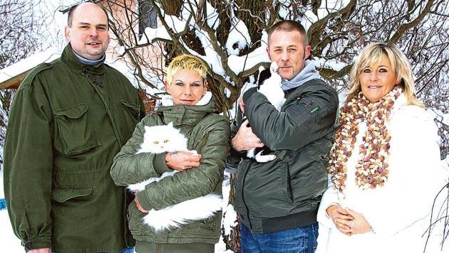 """""""Der Dank der Katzen ist mit Geld nicht aufzuwiegen!"""" (Bild: Tierschutzverein """"White Angel"""")"""