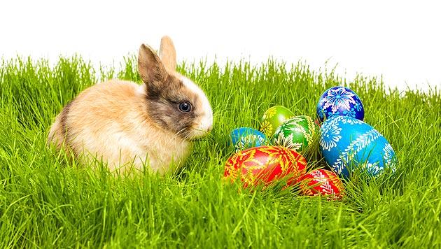 Zu Ostern bewusst einkaufen und schenken (Bild: thinkstockphotos.de)