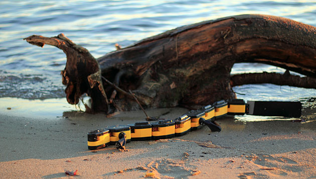 Robo-Salamander ist zu Lande und im Wasser unterwegs (Bild: Kostas Karakasiliotis/Biorobotics Laboratory, EPFL)