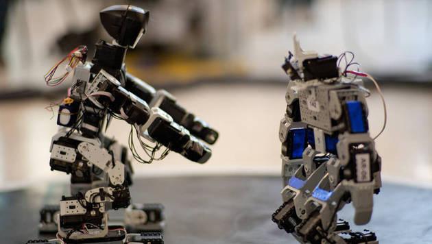 """Roboter als Alltagshelfer bei """"RobotChallenge"""" (Bild: robotchallenge.org/Simon Hellmayr)"""