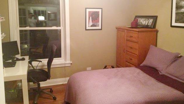 """Wohnungsanzeige mit Hund """"Otis"""" als Internethit (Bild: John und Sara Kanive)"""