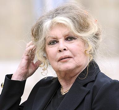 Brigitte Bardots entlaufene Katze ist wieder zurück (Bild: AFP)