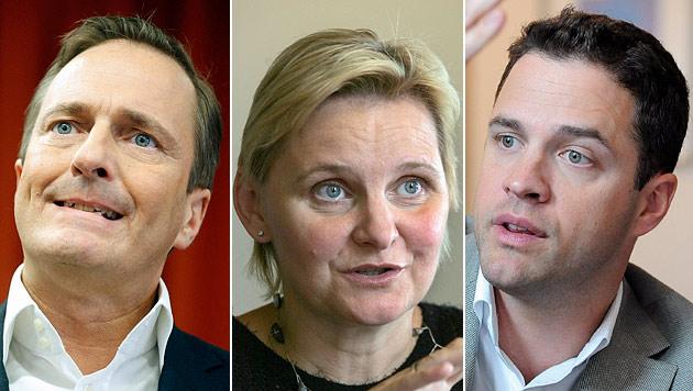 Immer mehr Politik-Berater: Wien hat 17 Beauftragte (Bild: APA/GEORG HOCHMUTH, APA/HERBERT PFARRHOFER, APA/ROBERT JAEGER)