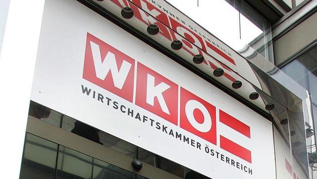 WK-Wahl: Wirbel um gefälschte Unterschriften (Bild: APA/Guenter R. Artinger)