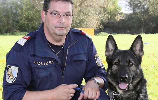 In OÖ verunglückter Polizeihund erhält Ehrengrab (Bild: Polizei/Guttmann Bruno)