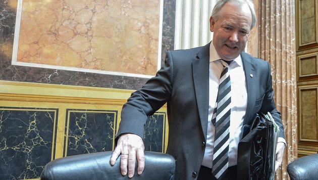 Gerhard Dörfler: Bundesrat und Ex-Landeshauptmann von Kärnten (Bild: APA/HERBERT NEUBAUER)