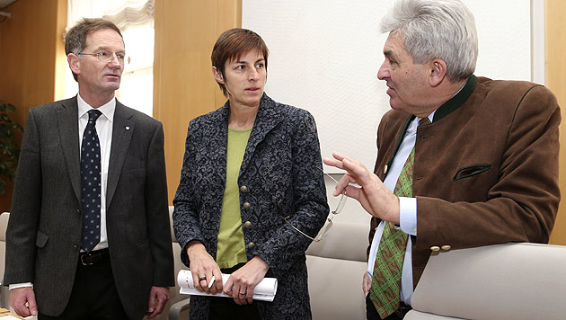Sbg: Zeugen befragt - U-Ausschuss vor finaler Phase (Bild: APA/FRANZ NEUMAYR)