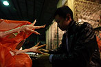 China: Vogelgrippe-Erreger auf Märkten entdeckt - 6 Tote
