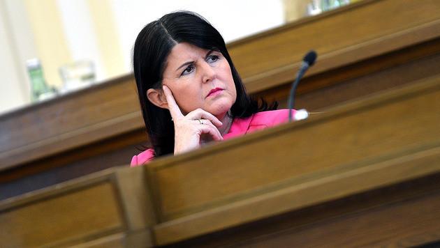 Zoff ums Wohnen: Jetzt auch Vorwürfe gegen Burgstaller (Bild: APA/BARBARA GINDL)