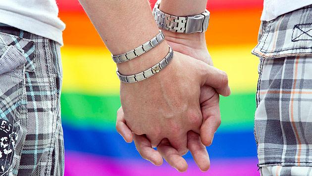 Keine Parlamentsmehrheit für Homo-Ehe (Bild: dpa-Zentralbild/Michael Reichel)
