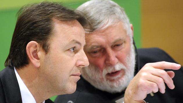 Almflächen: Fischler sucht nach Lösung im Streit mit EU (Bild: APA/ROBERT JAEGER)