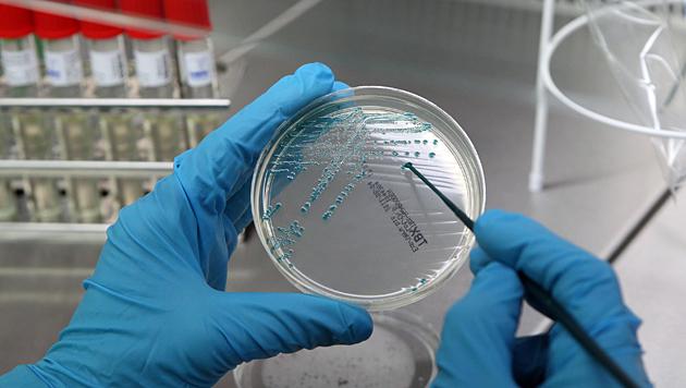 Noroviren-Ausbruch in Salzburger Seniorenwohnheim (Bild: EPA)