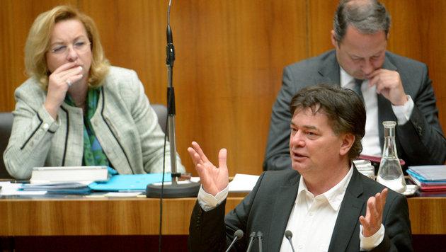 Grüne: Regierung soll Schweiz-Deal kündigen (Bild: APA/ROLAND SCHLAGER)
