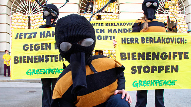 "Bundesamt: Daten zu Pestizid-Einsatz ""Amtsgeheimnis"" (Bild: APA/Greenpeace/Teresa Novotny)"