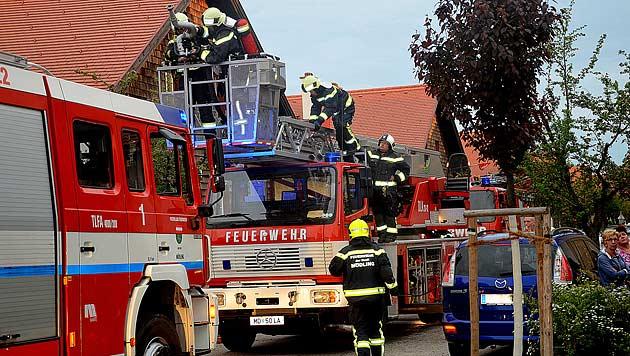 Haus in NÖ brannte: Hund befreit und wiederbelebt (Bild: Pressestelle BFK Mödling)